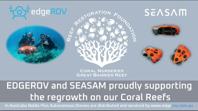 EDGEROV AND NOTILO PLUS SUPPORTING THE REEF RESTORATION